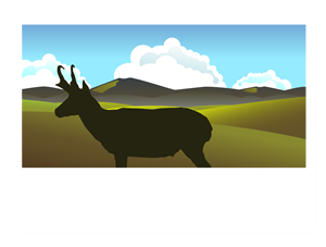 Habitat Specialists: Birds of the Bodie Hills